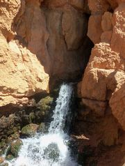 The mouth of Cascade Falls, headwaters of the north fork o the Virgin River